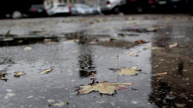 deszcz, pogoda, trudne warunki